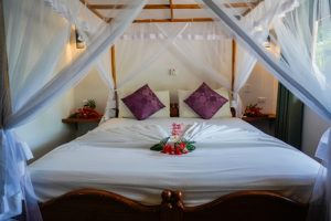 zimmer1_kingdom-ayurveda-resort